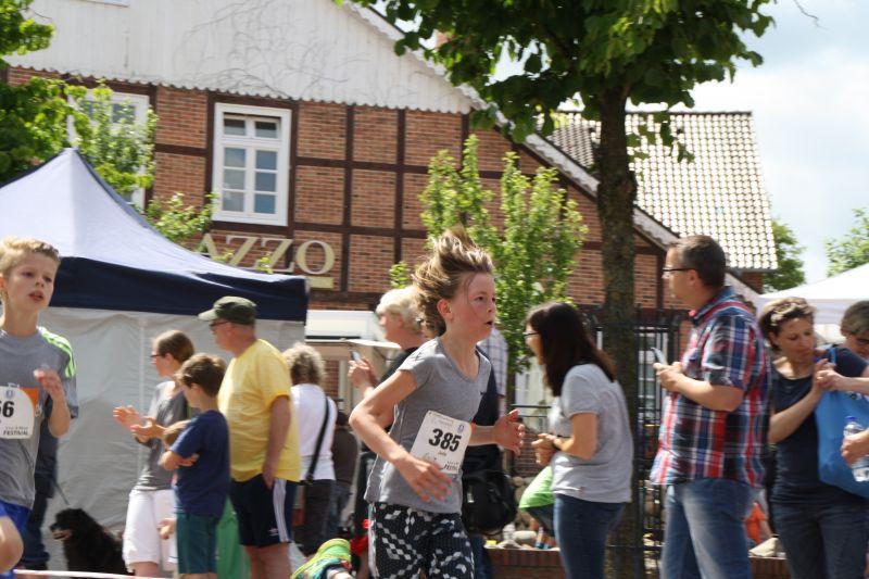 0193_lauf_musikfestival_17_jsch