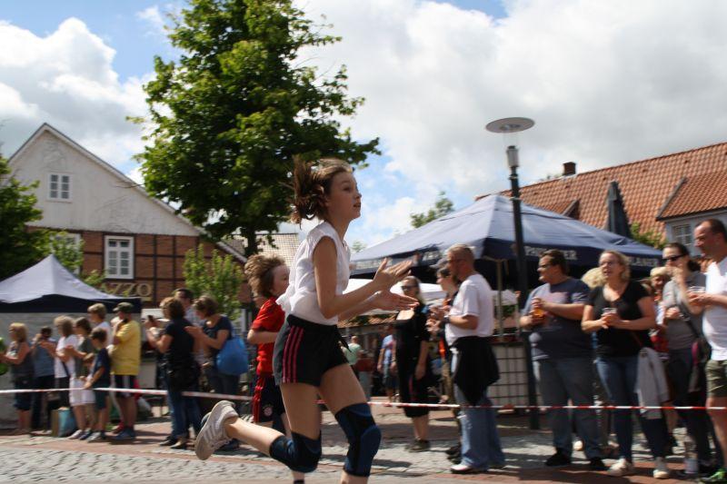 0267_lauf_musikfestival_17_jsch